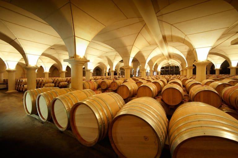 Sur la route des Grands Vignobles - Agence de Voyage PyrenÔrizon Voyages Vic en Bigorre Occitanie